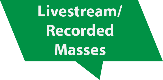 LivestreamRecordedMass